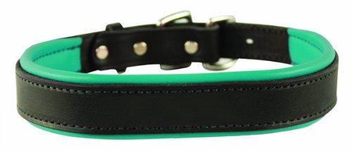 collar para perros color verde