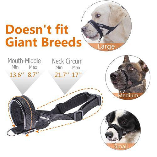 perros usando el bozal FOMATE