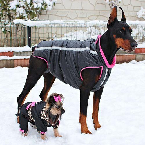 venta de ropa para perros